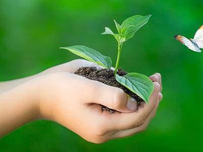 Make the world green